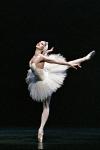 Het Zwanenmeer door Het Nationale Ballet